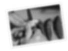 La Perle Des Dieux - Sardines in blik 1