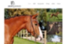 Website Mijn Kerstmarkt