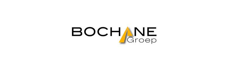 Bochane Groep Renault logo