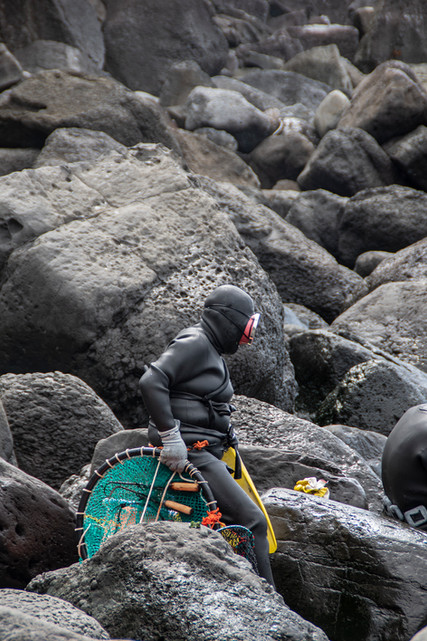 The Jeju Haenyo Women Divers