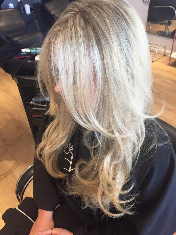 hairdresser caringbah lavish10