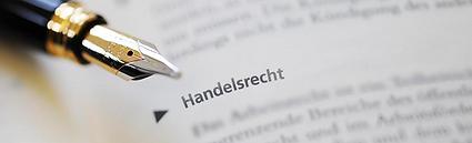 Advocaat_Gerd_Adriaensen.png