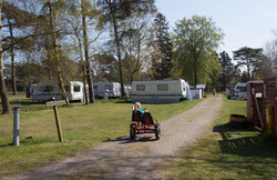 The camp site