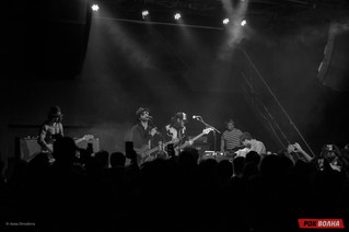 thecoral-28.jpg