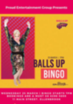 Balls Up Bingo The Brook