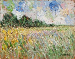 """Samir Sammoun, """"Lavender wild field"""""""
