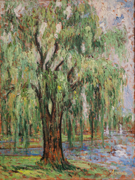 "Samir Sammoun, ""The Willow, Boston Park"""