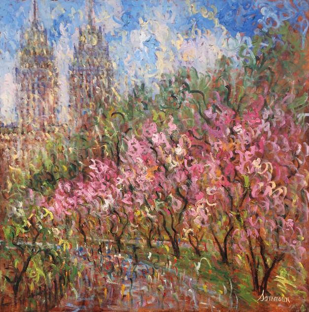 "Samir Sammoun ""Cherry Blossom, Central Park"""