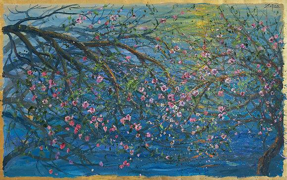 Bruno Zupan - Blossoms On Coast Road