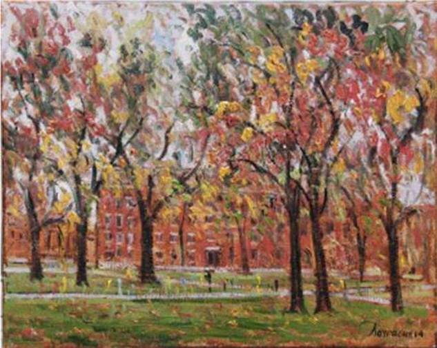 """Samir Sammoun """"Harvard University, Fall"""""""