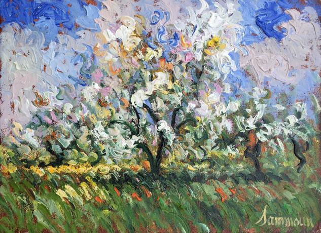 """Samir Sammoun """"Apple Trees in Bloom"""""""
