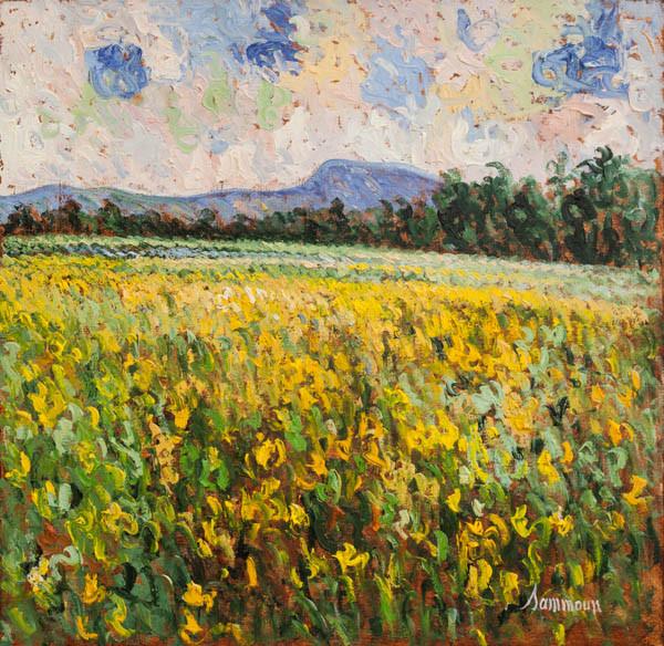 """Samir Sammoun, """"Mustard Field, Ile d'Orleans"""""""