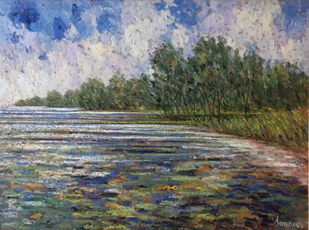 """Samir Sammoun """"Lilies, Lake Champlain"""""""