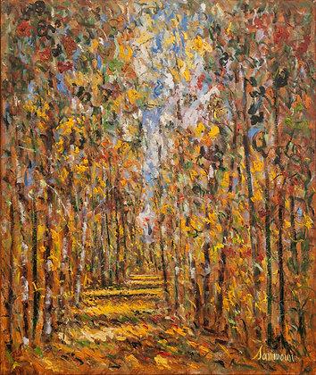 Samir Sammoun - Autumn Birches