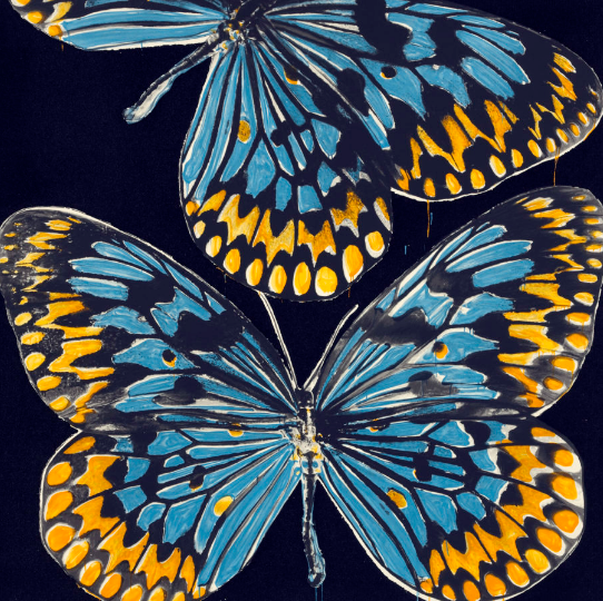 "Donald Sultan, ""Butterflies, Jan 25, 2006"""