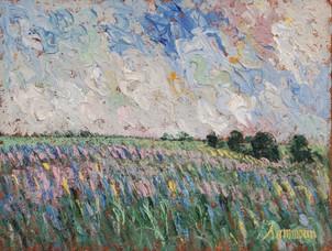 """Samir Sammoun, """"Wild lavender field"""""""