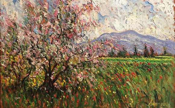 Color & Cadence: Samir Sammoun at Galerie d'Orsay