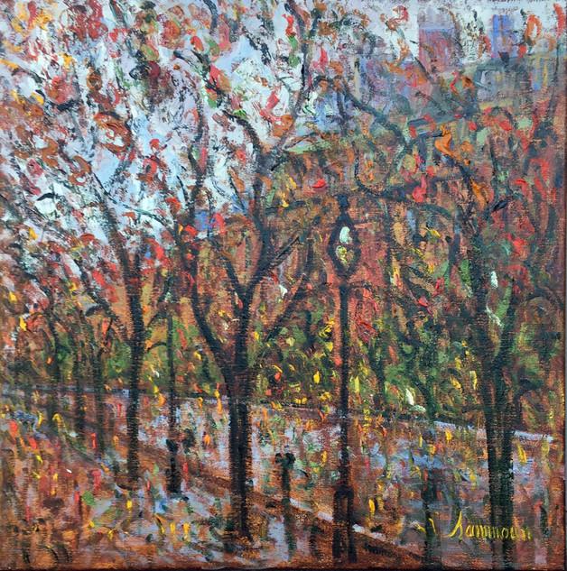 "Samir Sammoun ""Fall, Commonwealth Avenue"""