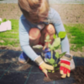 Ung plante - ung ekspertise 💚🌱 #miniho