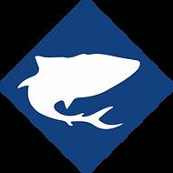 tubarão.png