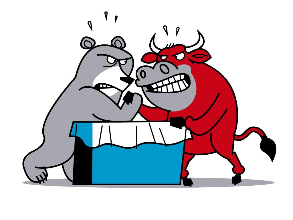 The Bear & The Bull