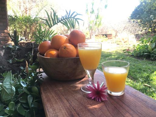 "RECEPT - ""HOME squeezed"" ORANGE juice and its BENEFITS."