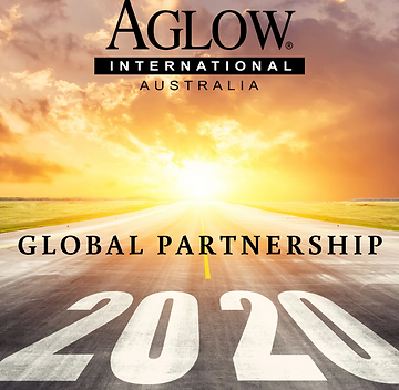 Global Partnership 2020