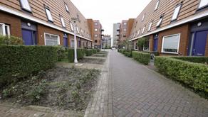 Heesters vervangen rozenvakken Medanstraat