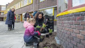 3000e geveltuintje Groningen op Bernouilleplein