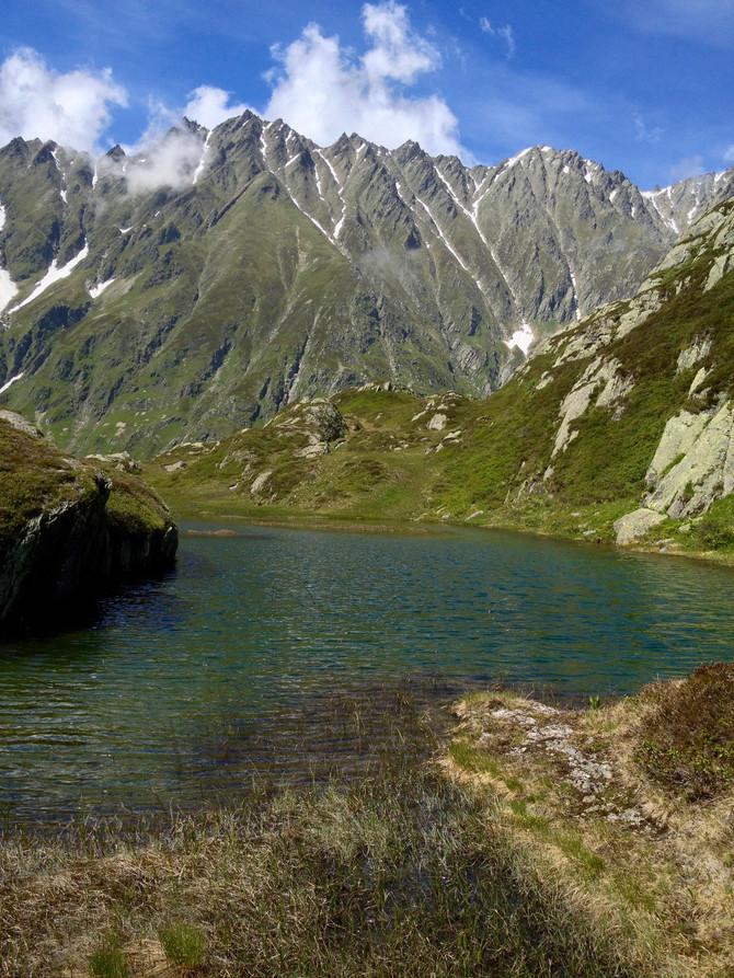 Bachsaiblinge & Bergfrühling