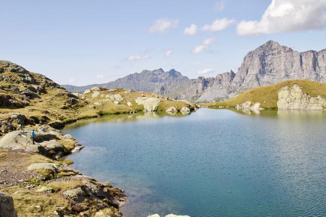Alpines Fliegenfischen auf Namaycush