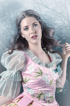 Mirror Mirror Snow White Adult Costume Lily Collin