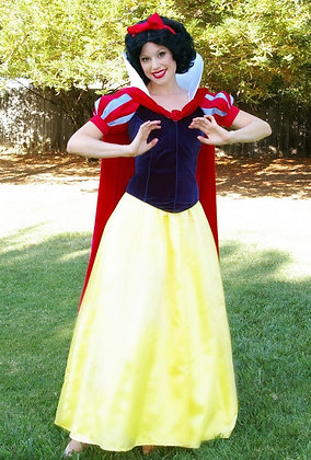 Custom Snow White D Adult Costume