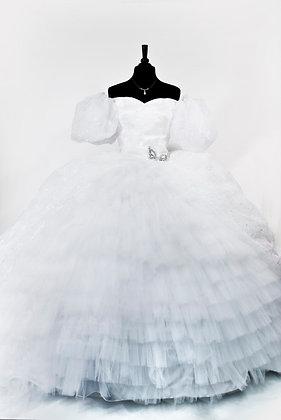 Custom Giselle Enchanted Dress Gown