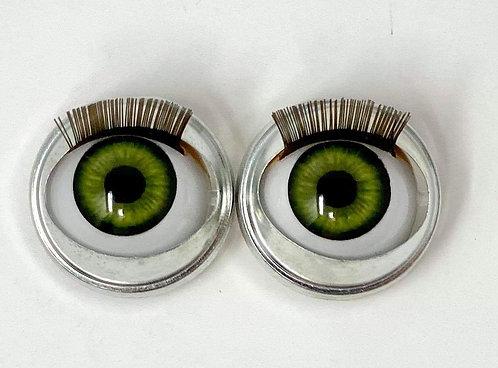 Premium Eyes Iguana