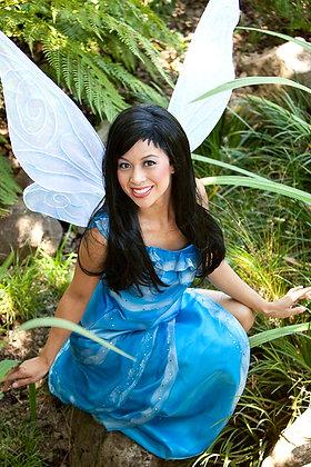 Silvermist Tinkerbell Fairy Friend Adult Costume
