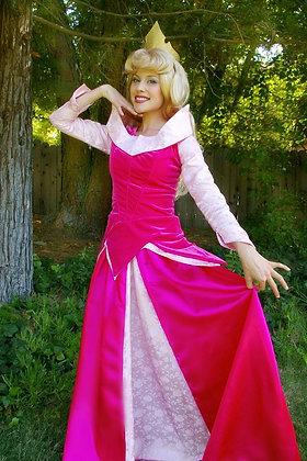Sleeping Beauty Adult Costume Version C Pink