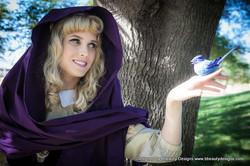 Briar Rose and the Bluebird.jpg