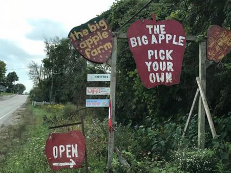 讀者英國分享: 自摘水果農莊