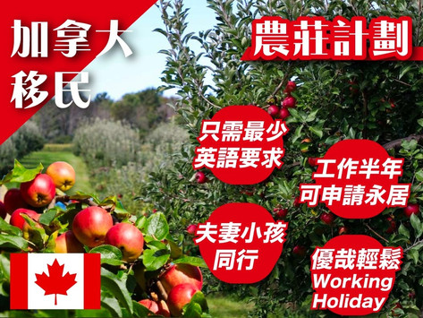 本週末免費講座: 低門檻【Working Holidays移民加拿大計劃】分享會⭐️