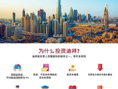 投資迪拜。 豪華公寓的房價由1,836,741港元起