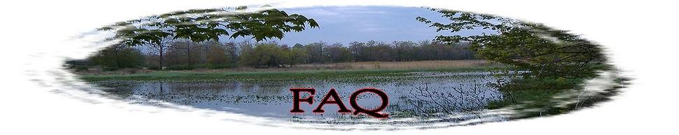 Page 13-FAQ.jpg