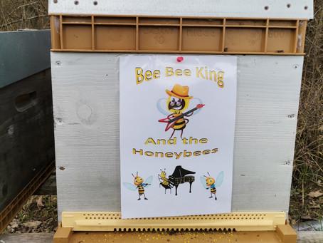 Bee Bee King