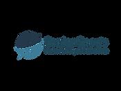 Senior Sports Logo 2.png