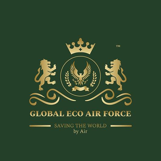 eco-airforce-logo-gold-green-bg.jpg