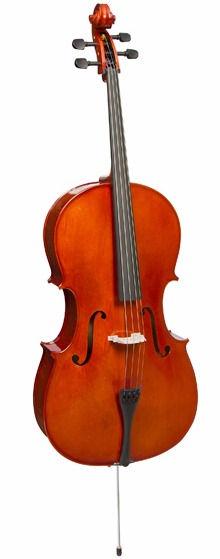 Cello with Susana