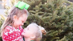 Christmas at the sap house