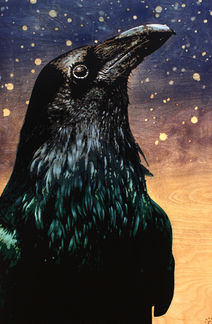 Starry-Eyed Raven