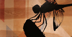 Dragonfly Silhouette: SOLD