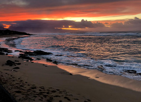 Hawaiian Journeys Continue: Way of the Honu and the Magic of Maui